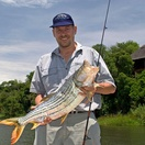 Tigerfish are renowned for being fighters - experience the rush for yourself